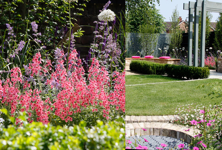 more pink themed planting adorns this tunbridge wells, kent greencube garden
